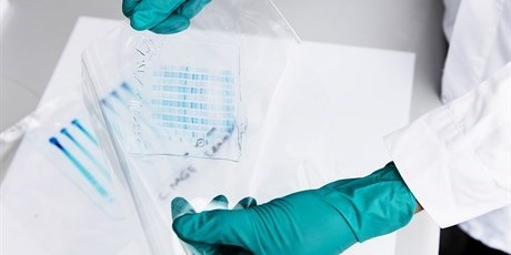 Enzyme characterization. In the BioProcess Engineering research centre new enzymes are examined by several different methods including gel electrophoresis. Photo: Thorkild Christensen